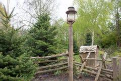Lampe à pétrole sur le poteau en bois Photographie stock libre de droits