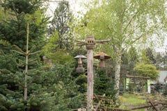 Lampe à pétrole sur le poteau en bois Images libres de droits