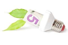 Lampe économiseuse d'énergie Image libre de droits