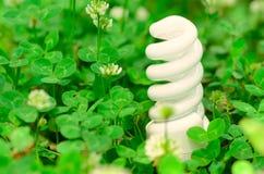 Lampe économiseuse d'énergie dans l'herbe verte Images stock