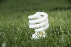 Lampe économiseuse d'énergie sur l'herbe verte Images libres de droits