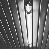 Lampe au néon Photographie stock libre de droits