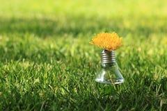 Lampe auf dem grünen Gras Stockfotografie