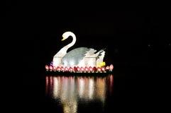 Lampe d'oie chinoise Photo libre de droits