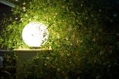 Lampe dans la nuit Photos libres de droits