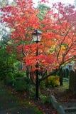 Lampe dans le cimetière Images stock