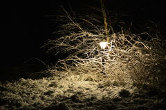 Lampe de Milou dans l'obscurité Image stock