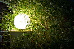 Lampe in der Nacht Lizenzfreie Stockfotos