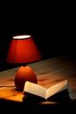 Lampe, die ein Buch belichtet Stockfotos
