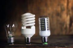 Lampe différente sur le concept de l'épargne de pièce de monnaie Photographie stock