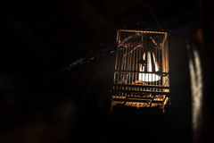 Lampe en bois de cage à oiseaux Photos stock