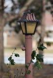 Lampe extérieure photographie stock libre de droits