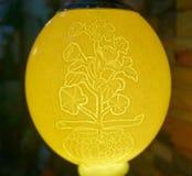 Lampe faite à partir de l'oeuf d'autruche Photos stock