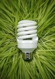 lampe fluorescente d'herbe de bâti Images stock