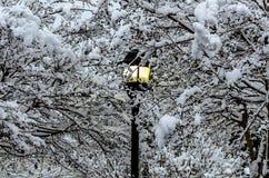 Lampe im Schnee Stockbild