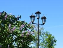 Lampe, Licht, Straße, Himmel, Laterne, Blau, Posten, Architektur, Laternenpfahl, Birne, Straßenbeleuchtung, Beleuchtung, alt, Eis stockfotos