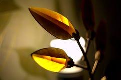 Lampe Lumière de nuit dans la chambre photos libres de droits