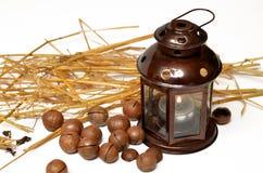 Lampe, Macadamiamuttern und Weizen Lizenzfreie Stockfotografie