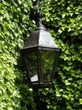 Lampe noire Photo stock