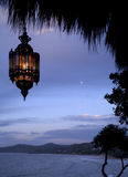 Lampe s'arrêtante dans les tropiques Photographie stock libre de droits