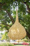 lampe sur l'arbre Images libres de droits
