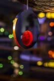 Lampe-torche sur un arbre Photo stock