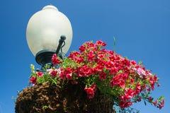 Lampe und Blumen Stockfotografie
