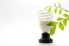 Lampe und Eco Stockfoto