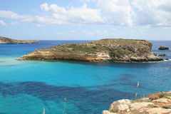 Lampedusa (Sicile) - île de lapins photos libres de droits