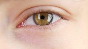 Lampeggi di occhio umano, fine su, movimento lento stock footage