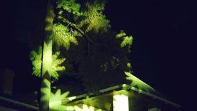 Lampeggiare e lumiere dei raggi di punto lampeggiante sugli alberi - concerto nella notte e nel fumo celebratorio stock footage