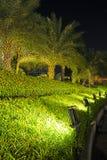 Lampen Verlichte Installaties en Tuin Royalty-vrije Stock Afbeelding