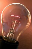 Lampenfühler Stockfoto