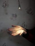 Lampenglanz auf Palme Stockfotografie
