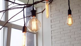 Lampes accrochantes d'Edison, illuminées medias Ampoules de cru accrochant sur les branches intérieures de la fenêtre sur le fond banque de vidéos