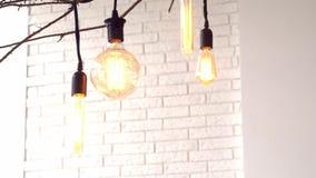 Lampes accrochantes de cru sur le fond blanc du mur medias Les ampoules rougeoyantes de cru de différentes formes accrochent sur  clips vidéos