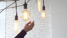 Lampes accrochantes de cru sur le fond blanc du mur medias Les ampoules rougeoyantes de cru de différentes formes accrochent sur  banque de vidéos