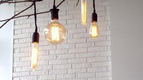 Lampes accrochantes de cru sur le fond blanc du mur medias Les ampoules rougeoyantes de cru de diff?rentes formes accrochent sur  clips vidéos