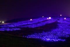 Lampes au néon avec de formes-Le le festival de lanterne différent d'abord à Nan-Tchang Image libre de droits