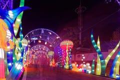 Lampes au néon avec de formes-Le le festival de lanterne différent d'abord à Nan-Tchang Photos stock