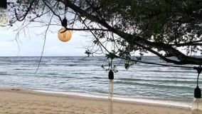Lampes d'Edison et fauteuil en osier accrochant sur l'arbre vert sur la plage de sable clips vidéos