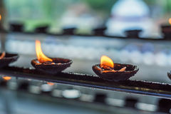 Lampes d'huile de noix de coco dans le temple Photographie stock libre de droits