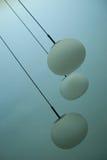 Lampes pendant du plafond Photos stock