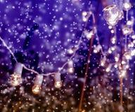 Lampes-torches en parc couvert de neige Image stock