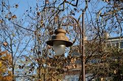Lampion Obrazy Stock