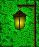 Lampion Obraz Royalty Free