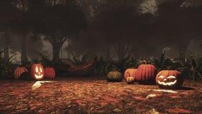 Lampion banie w jesień lesie przy nocą royalty ilustracja