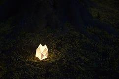 Lampion. An lampion at night close to an tree stock image
