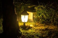 Lampion w noc Obraz Stock