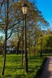 Lampion w parku zdjęcia stock